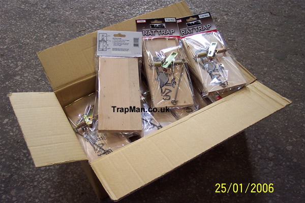 box of twelve wooden rat traps