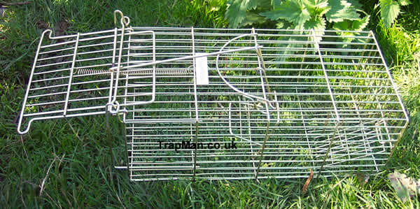 "The Trap Man ""Family"" 14"" Multi Catch Humane Rat Cage Trap"