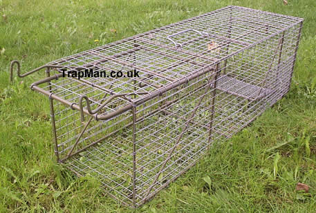 old design large cat trap