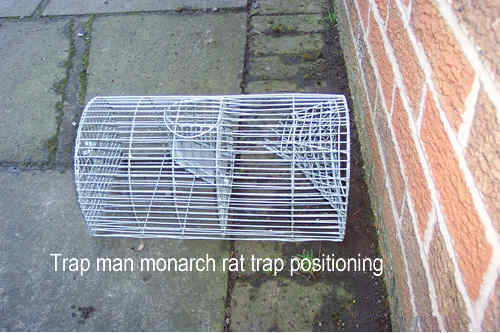 trap photo below for help on setting the rat trap