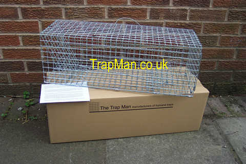 single catch rabbit trap