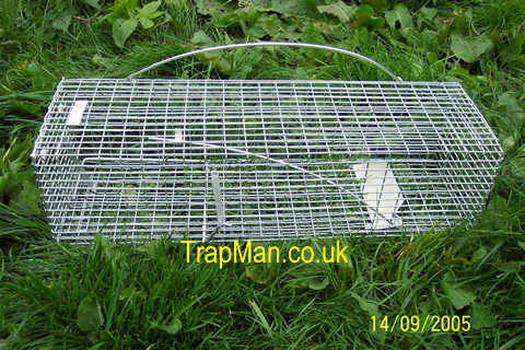 The Trap Man Stoat Trap Live Capture Humane Cage Trap For