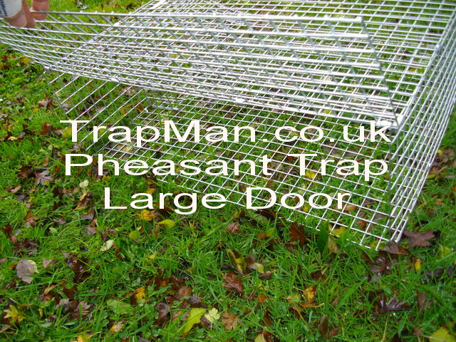 "28""x28""x10"" approximately, will be supplied built up & ready to catch pheasants, capable of multi catching pheasants, up to five + pheasants at each setting, easy empting using the wide drop down side mesh panel."