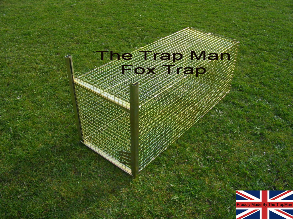 Flat packed Fox trap with wire treadle plate