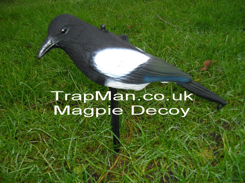 Used to scare off smaller birds can be hung from fishing line or fixed to a small cane, comes with plastic ground spike which allows the magpie to swivel round