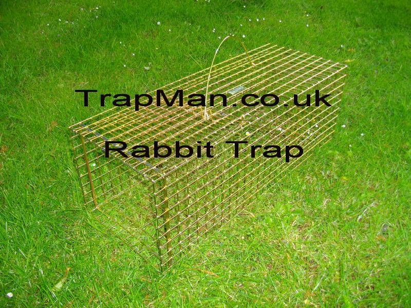 single catch rabbit trap with instructions boxed