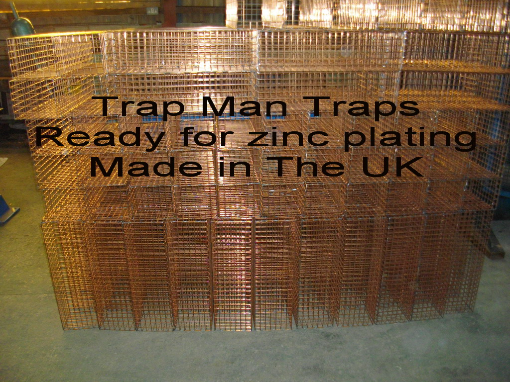 UK made trap man traps awaiting zinc plating