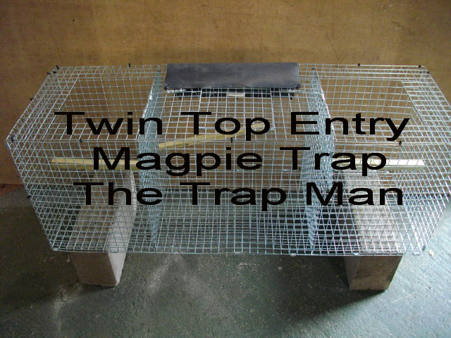 Twin capture magpie trap, twin top entry design with central decoy compartment