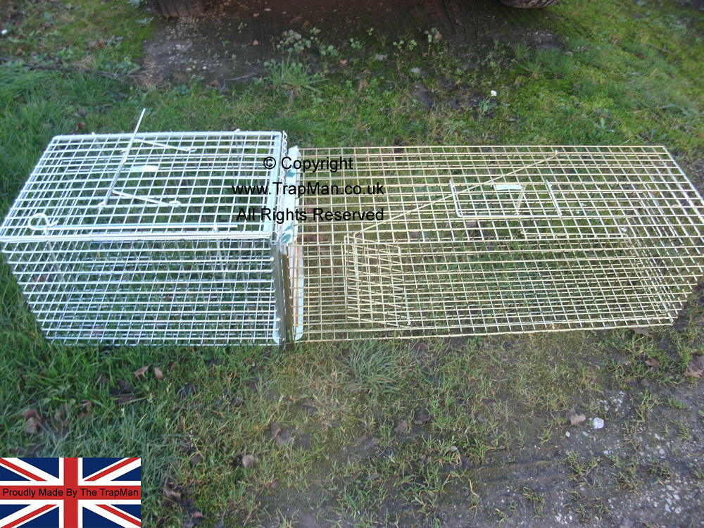 Trap Transfer cage and Pro Gold cat trap