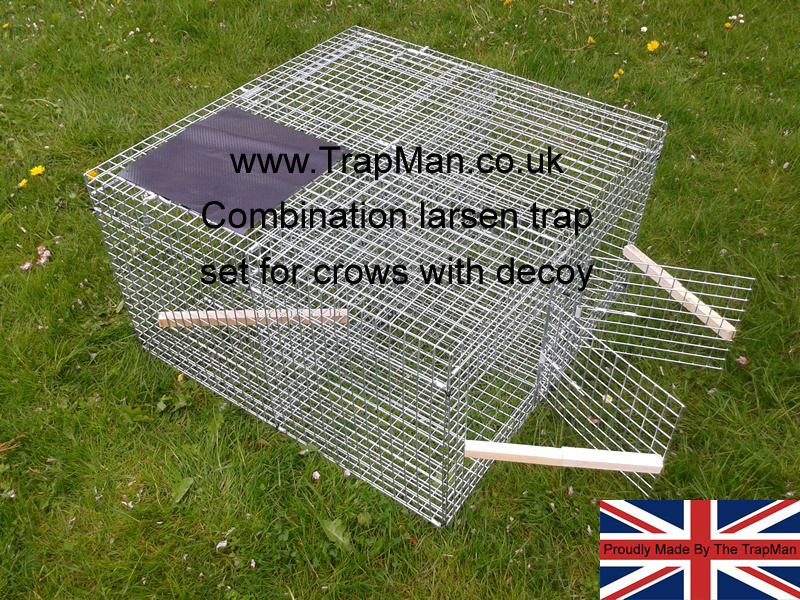 larsen combination trap set for crows twin side entry and decoy
