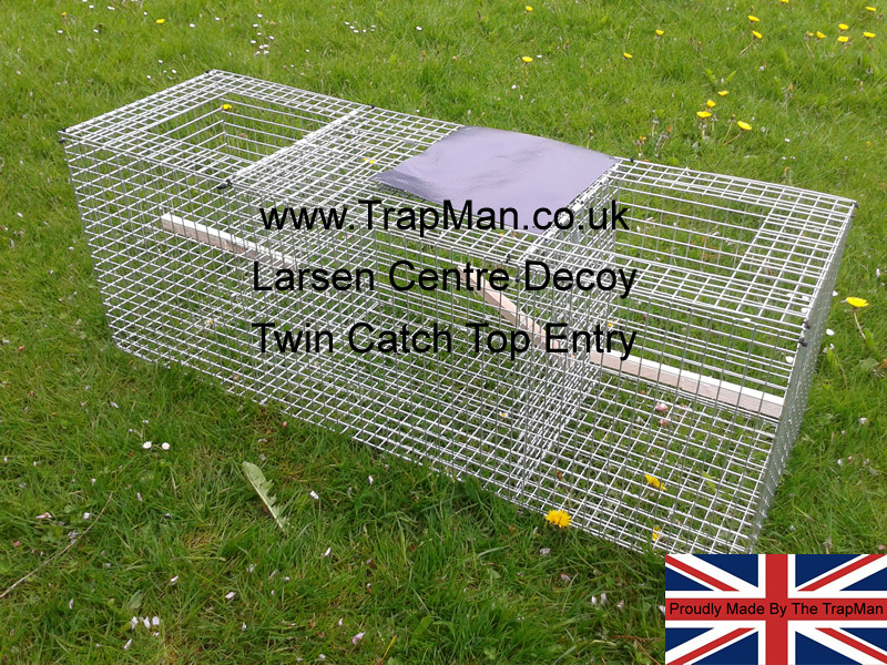 Cheaper twin top entry Magpie trap