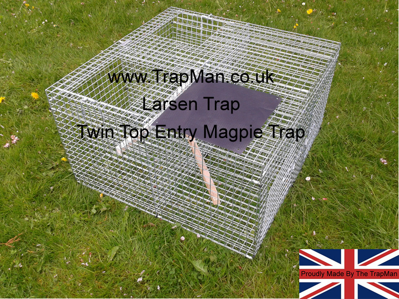 Top twin catch larsen magpie trap