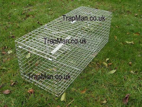 how to build a bird trap instructions