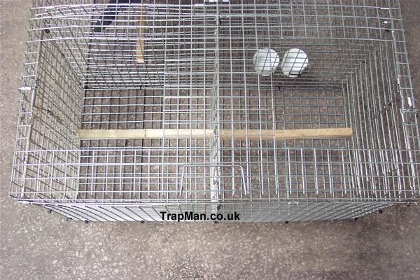 larsen magpie trap twin top entry doors