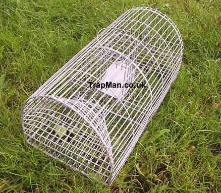 The Trap Man Monarch Rat Trap Multi Catch Repeating Live