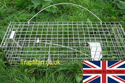 trap man squirrel trap