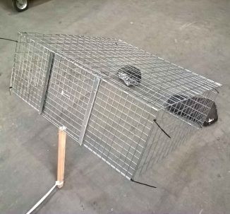Feral cat drop trap baiting and setting