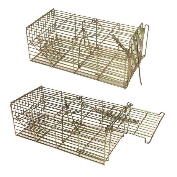 Famlie-rat