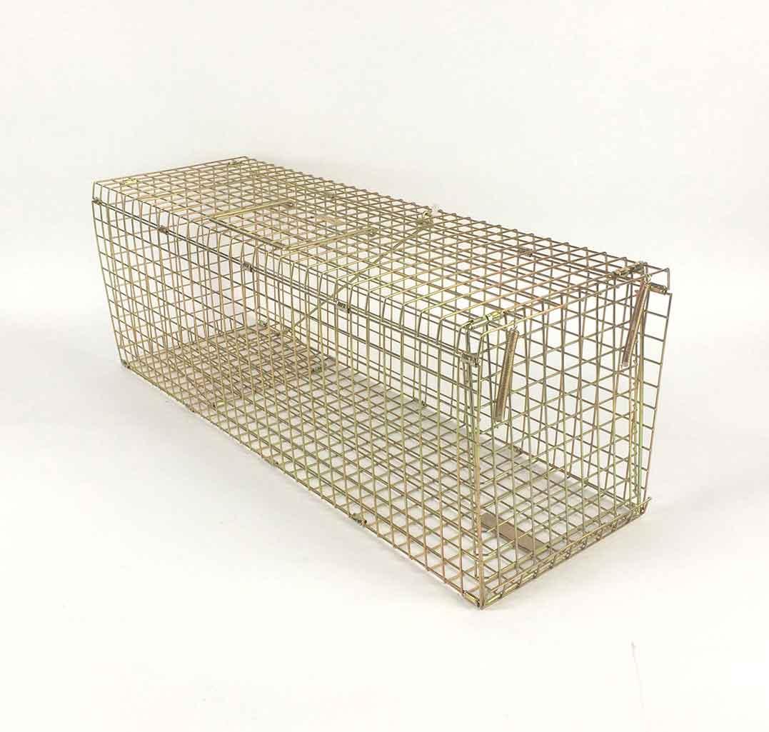 Folding feral cat trap
