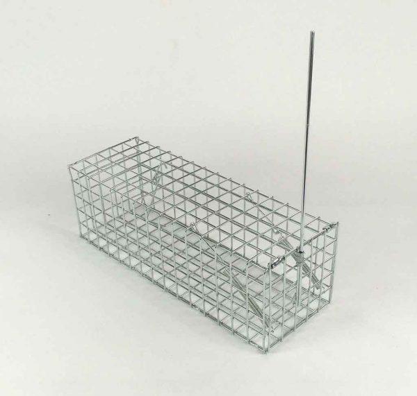 Simple-rat-trap-2