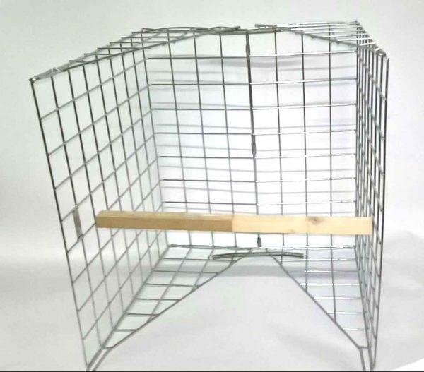 clam-wood-pigeon-trap-set