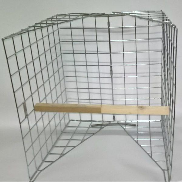 clam wood pigeon trap set