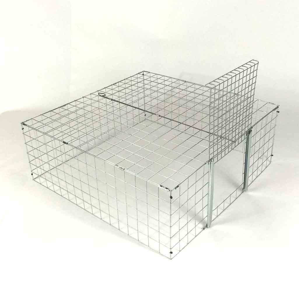 feral cat colony trap