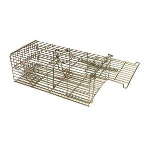 correctly set family rat trap