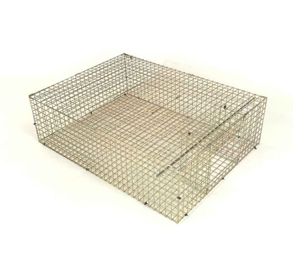 feral-pigeon-trap-open