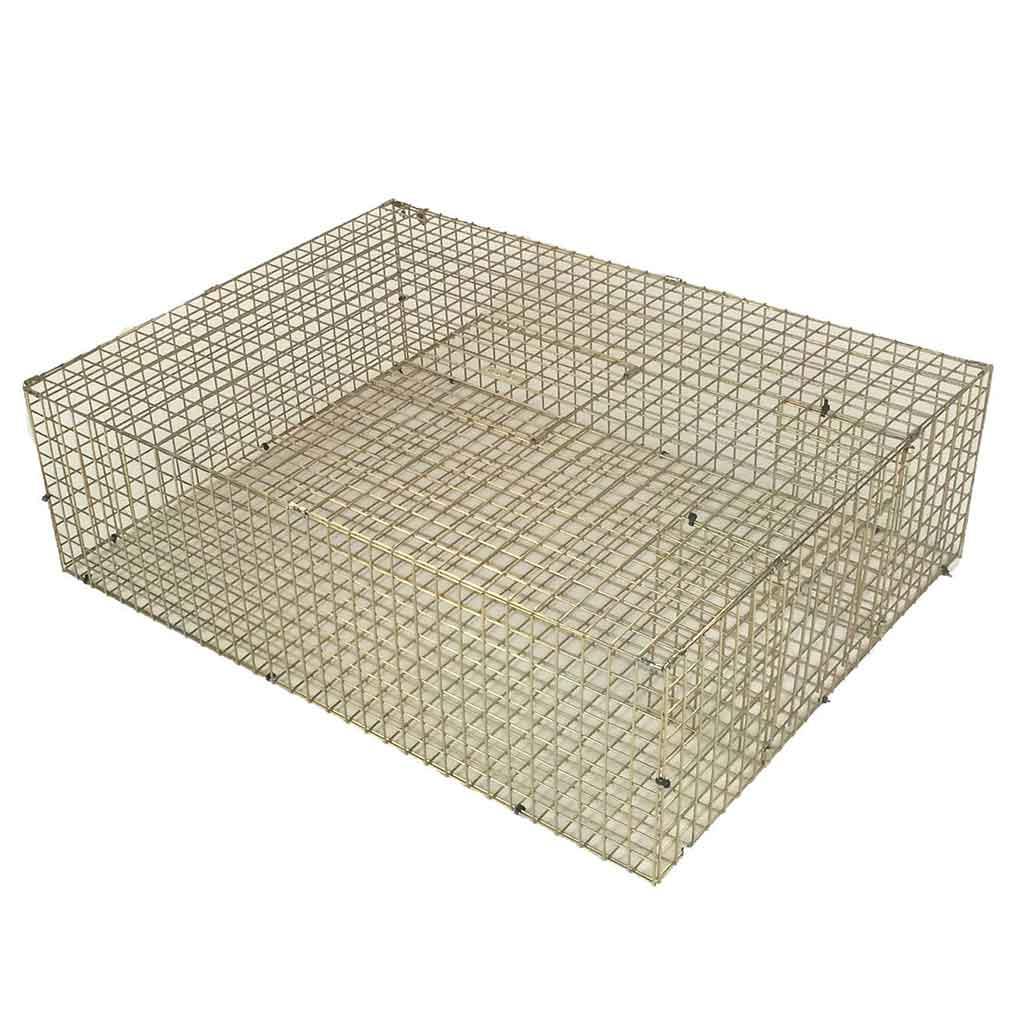 multi catch feral pigeon trap