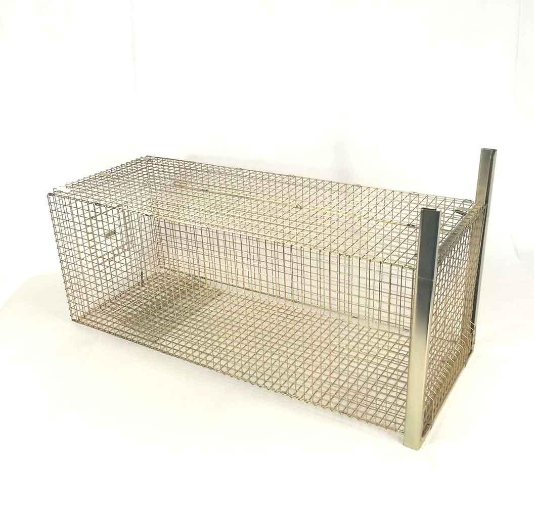 fox trap, large fox trap, long fox trap, heavy duty fox trap.