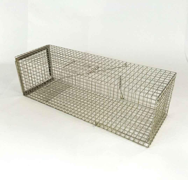 large pro cat trap