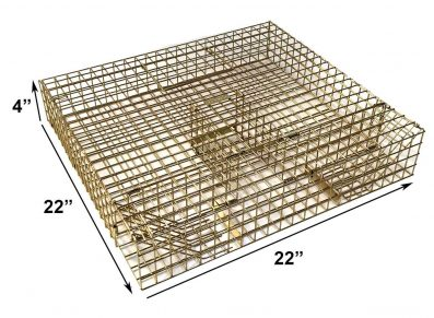 Multiple catch grey squirrel trap