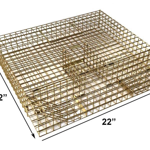 multi-catch-grey-squirrel-trap