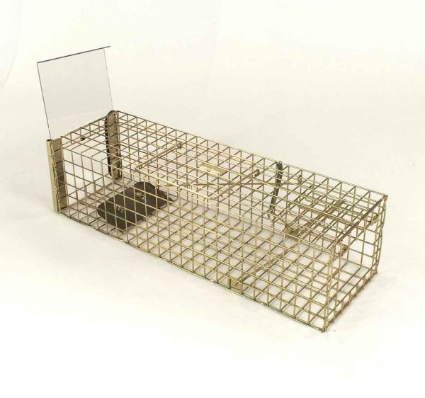 pro gold squirrel trap  open back