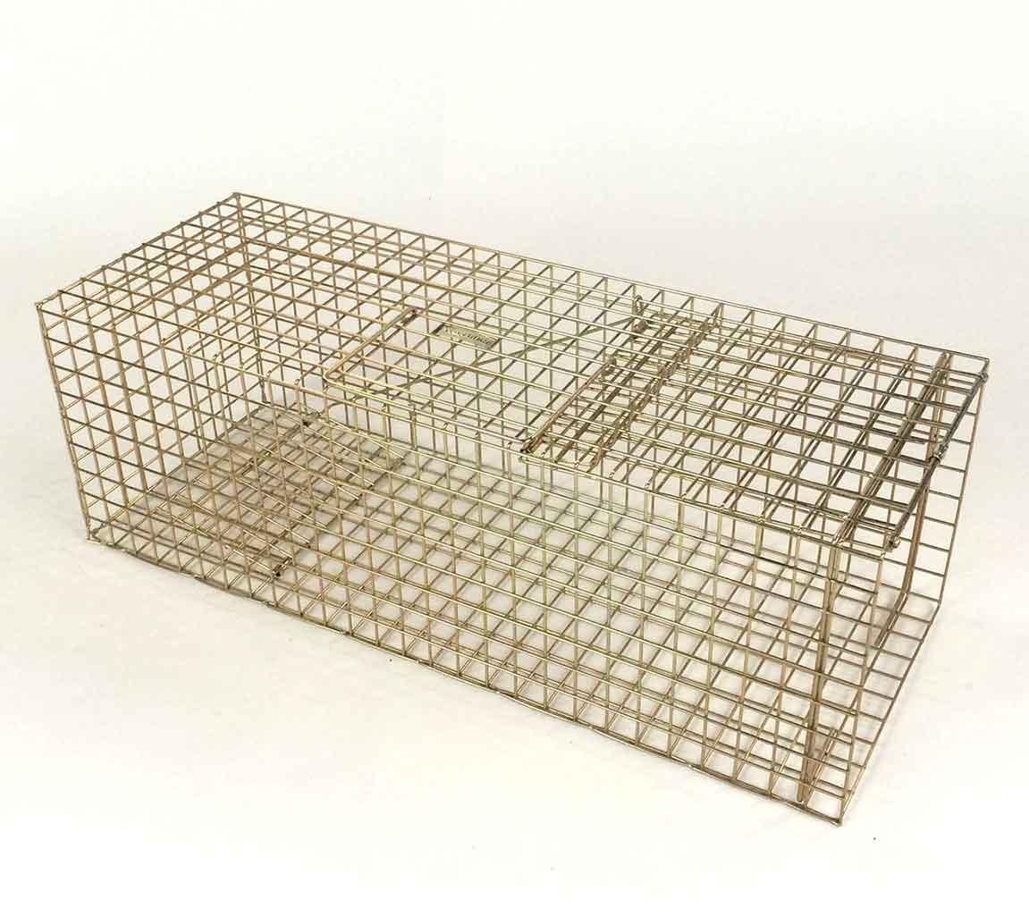 standard rabbit trap